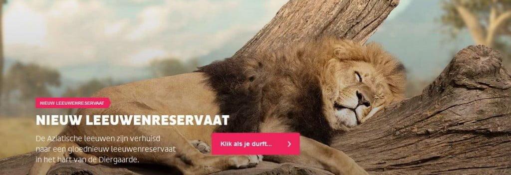 'Leeuw' in je achternaam? Gratis naar Blijdorp!