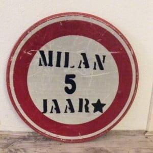 Milan, jarig, mamablogger, verjaardag