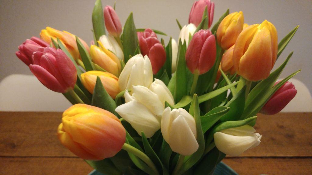 Tulpen_persoonlijk_milan_verjaardag_milan_