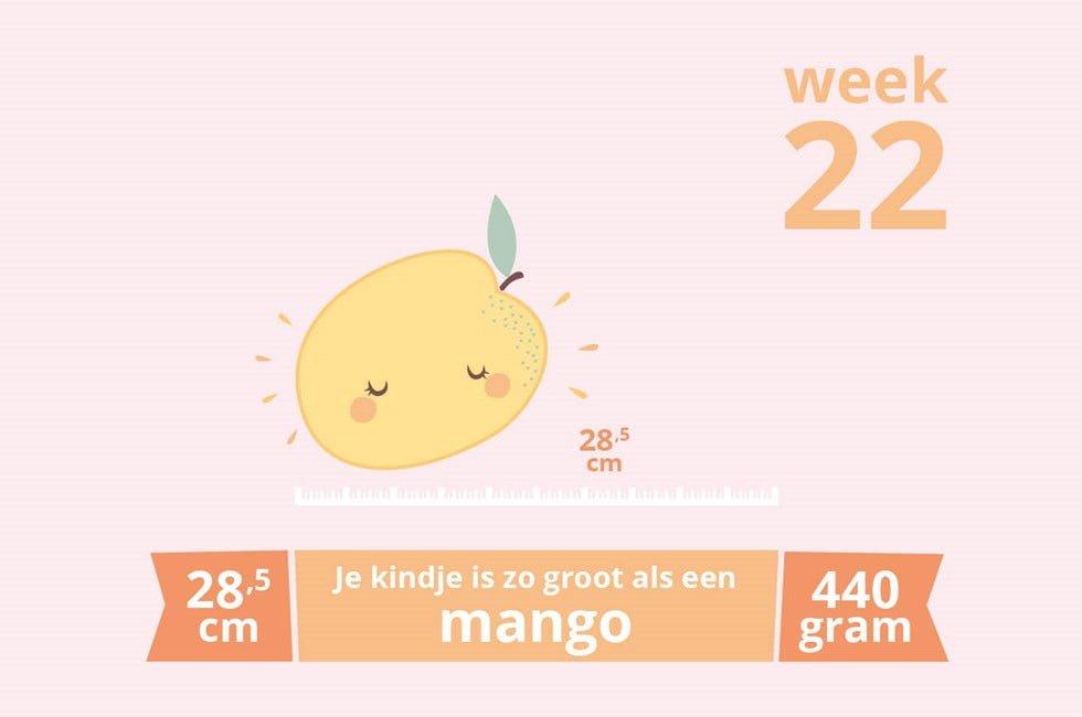 zwangerschapsupdate_week 22_mamablogger_zwanger_baby_marisca_blogger_