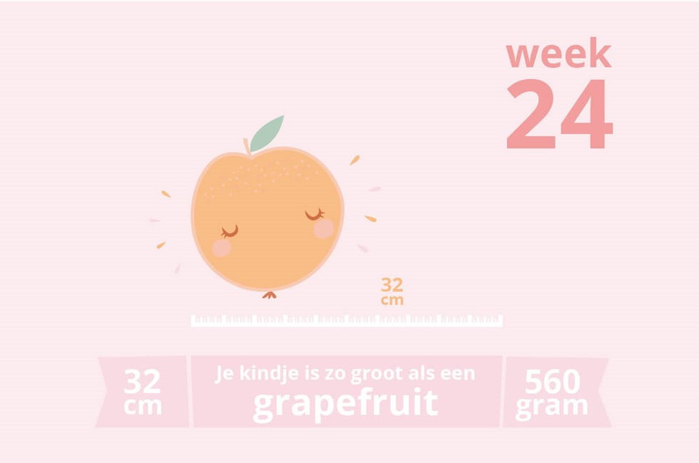 Zwangerschapsupdate #16 | Week 24!