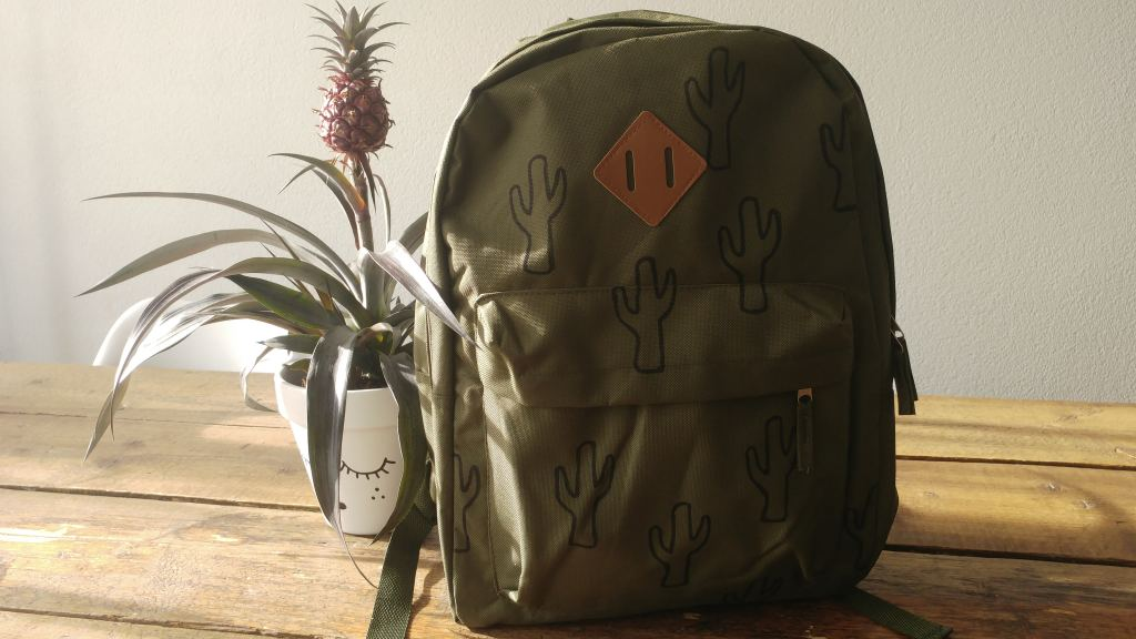 Back to school DIY Budget | Rugtas met cactusprint!