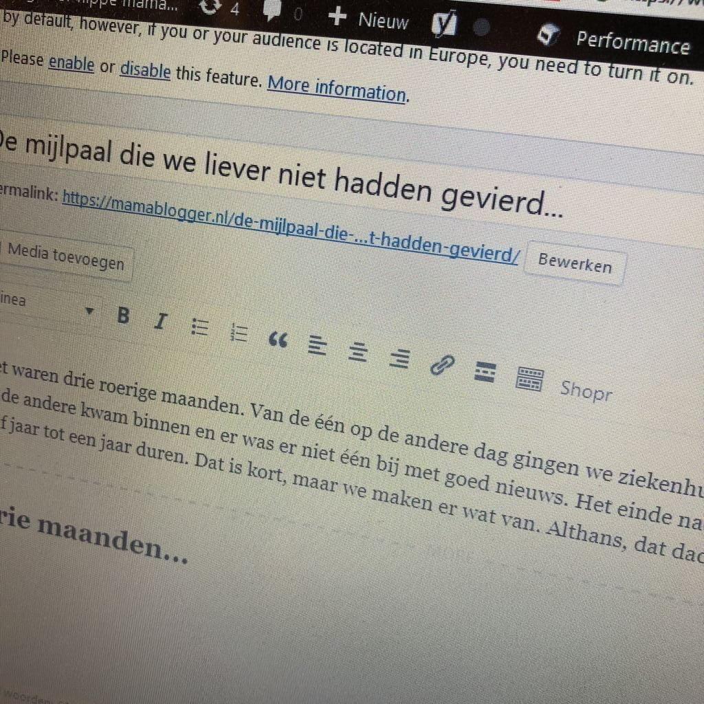 diary_mamablogger_schouwburg_barbecue_persoonlijk_dagboek_plog_