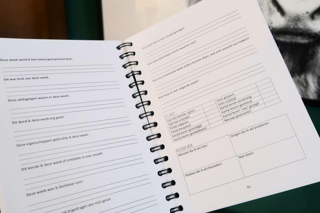 Geluksplanner_52_weken_project_mamablogger_Melon_Day_planner_zelfreflectie_