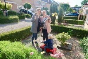 Kärcher Weed Remover_diary_persoonlijk_gezelligheid_kunstgras_tuin_gezin_