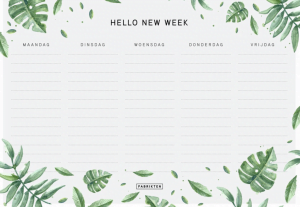 weekplanners_mamablogger_planner_agenda_lifestyle_