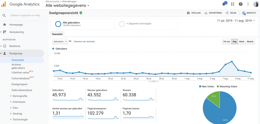media kit_screenshot_google analytics_mamablogger_