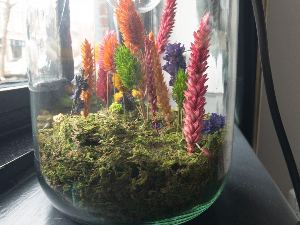 DIY | Droogbloemen in een glazen tafellamp