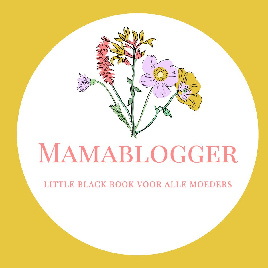 achter de schermen_rustige periode_bloggen_mamablogger_