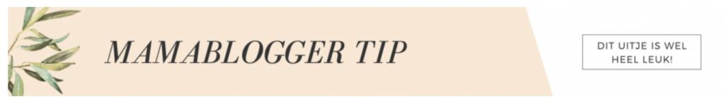 Mamablogger tip_42 gratis en low budget uitjes_mamablogger_dagje uit_budget moeders_